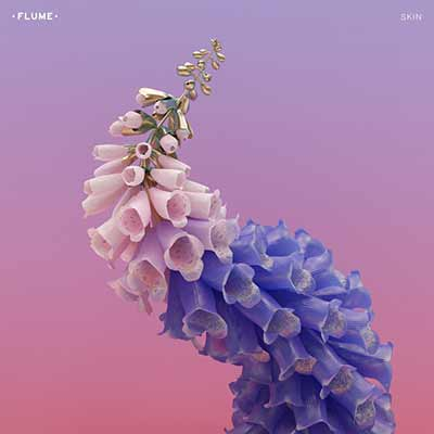 The album art for Flume's Skin