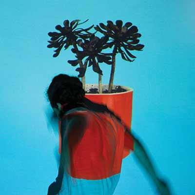 The album art for Local Natives' Sunlit Youth