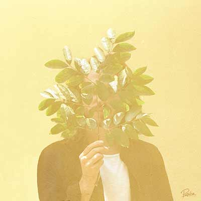 The album art for FKJ's French Kiwi Juice